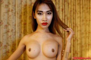 XXX Bilder von sexy Ladyboys mit pralle Titten
